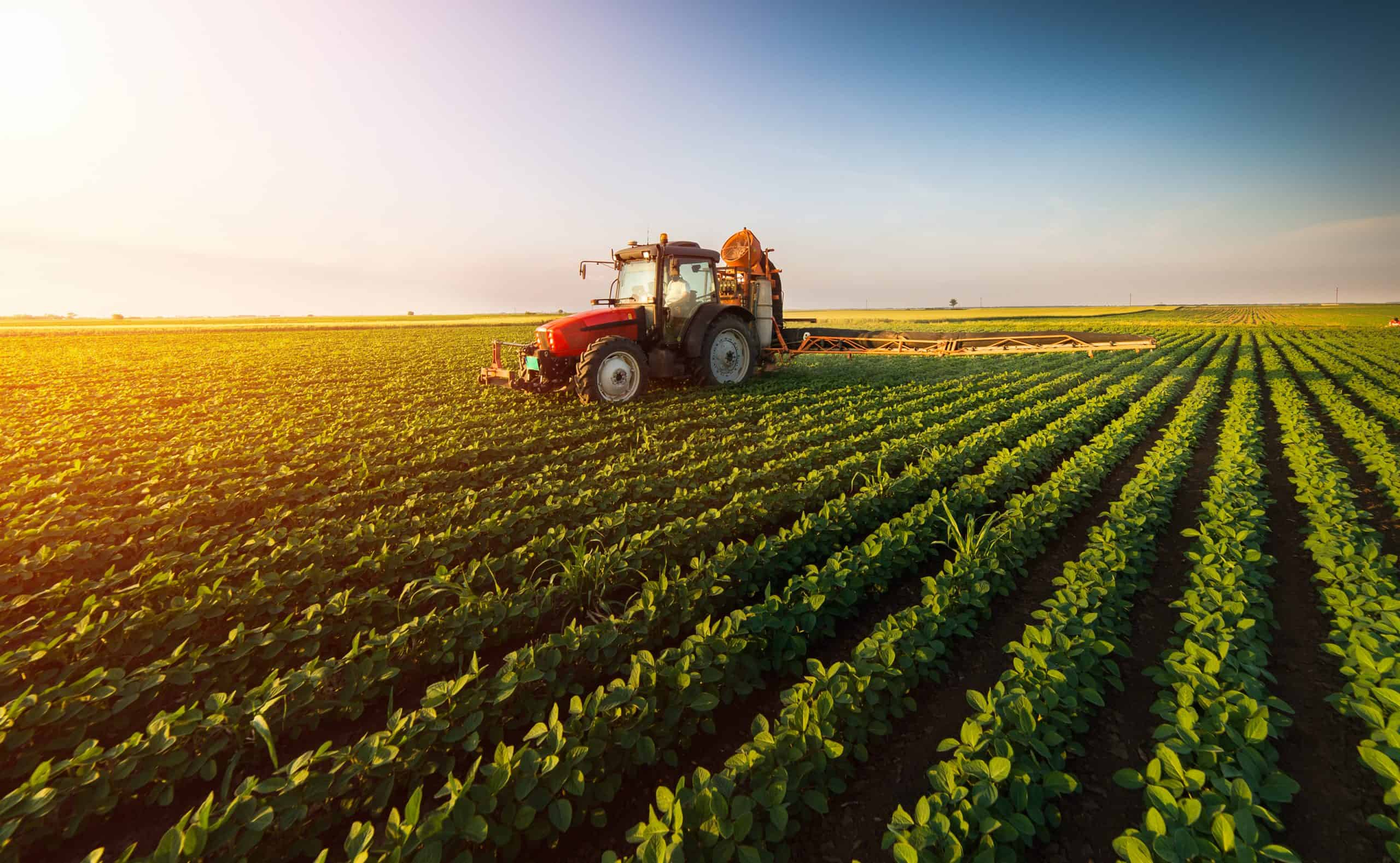 Farmmi (FAMI) Stock Surges Amid Developing Agricultural Supply Chain in China